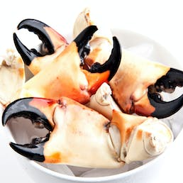 Large Stone Crab Claws